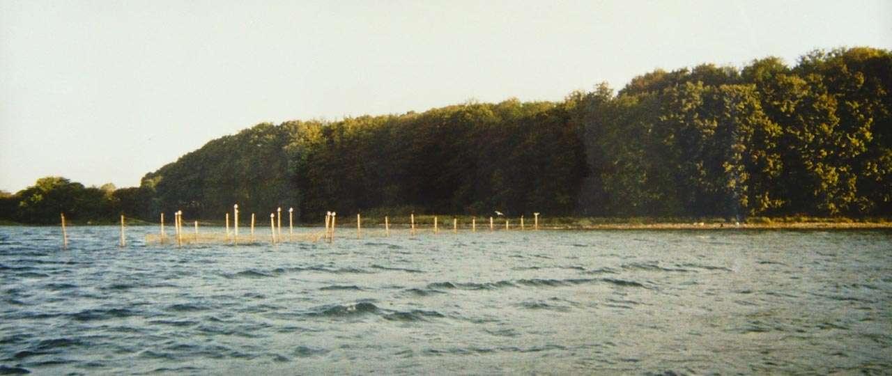 Bundgarnsfiskeri - Lokalt bæredygtigt og naturskånsomt fiskeri